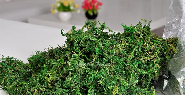 100 g / torba kuru Tutmak gerçek yeşil moss dekoratif bitkiler vazo saksı için yapay çim ipek Çiçek aksesuarları dekorasyon