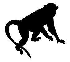 Monkey Car Sticker Zoo Animal Vinyl Car Packaging Personalized Decoration Car Sticker