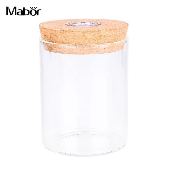 Ecology Box Lamp Night Light Straight Glass Bottle 15*8*8cm NEW Romantic Micro Landscape Decoration Gifts Luminous