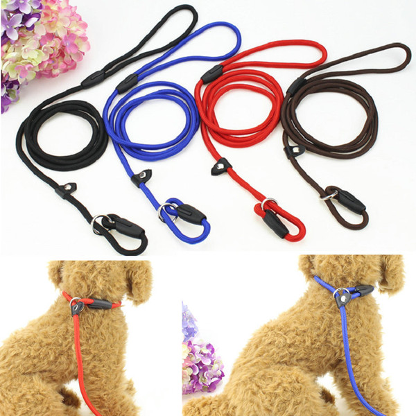 Nylon Rope Dog Whisperer Cesa Milan Style Slip Training Leash Lead and Collar Walk Traction Rope Red Blue Black Coffee Colors
