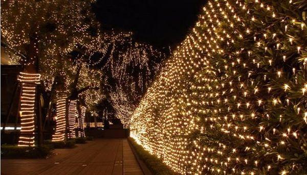 10M*8m 2000 LED Net Lights Large Indoor/Outdoor Landscape Lighting Christmas New Year Garlands Waterproof LED String AC110V-240V