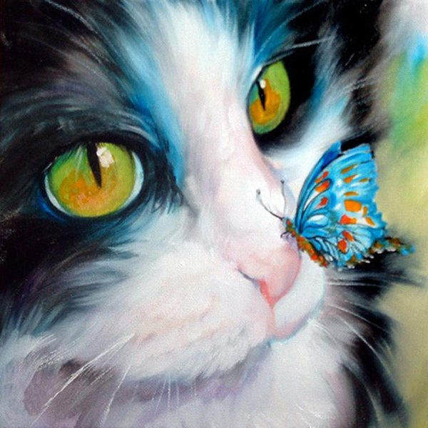 5d diamante pintura ponto cruz diamante bordado cor gato borboleta animal rodada diamante mosaico animais bordados 24 * 24 cm