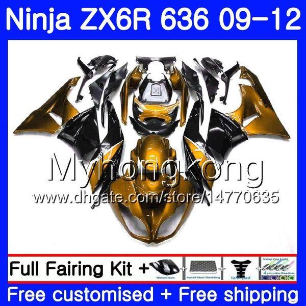 Gold light Körper + Tank Für KAWASAKI NINJA schwarz ZX636 ZX-6R 2009 2010 2011 208HM.41 ZX 636 ZX 6R 600CC ZX-636 ZX6R 09 10 11 12