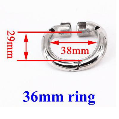 Misura dell'anello: 36mm