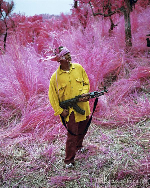 best selling Free Shipping Richard Mosse Infra Birdland web Art Print Poster 24x36 Art Posters Prints Home Decor Wall Paper 16 24 36 47 inches