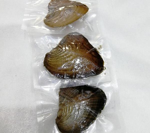 Oyster Pearl rotondo 6-8mm 2018 new 20 Mix color big Regalo d'acqua dolce Fai da te Perle naturali Perline sfuse Decorazioni Vacuum by mygogo