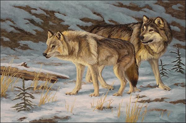 Strass plein carré diamants broderie animal loup diy peinture diamant point de croix kit maison mosaïque décoration zxh0509