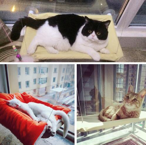 Cat Hammock Bed Basking Window Mounted Bed Sofa Mat Lounger Perch Cushion Hanging Shelf Seat with Suction Cup for Chinchilla