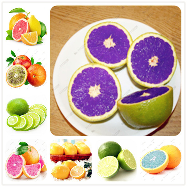 20 Pcs/bag Edible Fruit Meyer Lemon Seeds, Exotic Citrus Bonsai Lemon Tree Fresh Seeds fruit vegetable seeds for home garden