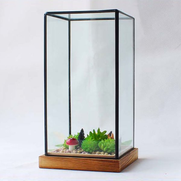 New Miniature Glass Terrarium Geometric Diamond Desktop Garden Planter For Indoor Gardening Home Decor Vases With Wooden Pedestal XWX9-673