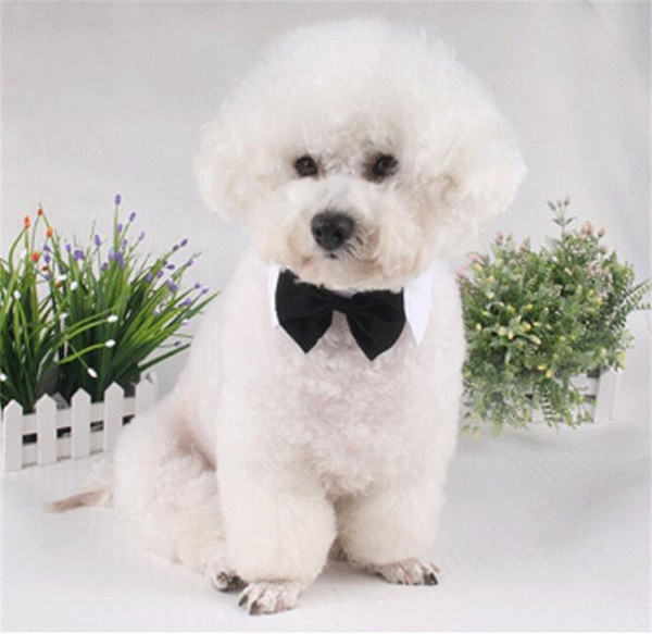 Adjustable Dogs Cats Tie Pet Lovely Adorable Sweetie Grooming Neckties Dog Fashion Collar Solid Print Neck Wear Pet Dog Supplies 4 71jz Y