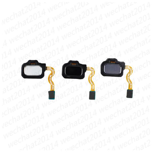 Touch Fingerprint Sensor Indietro Home Tasto di ritorno Tasto Tasto Flex Cable per Samsung S8 plus S9 Plus Nota 8