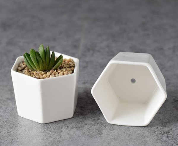 100pcs Decorative Geometry Hexagon White Ceramic Succulent Plant Pot Porcelain Flower Pot Zakka Home Decor free shipping