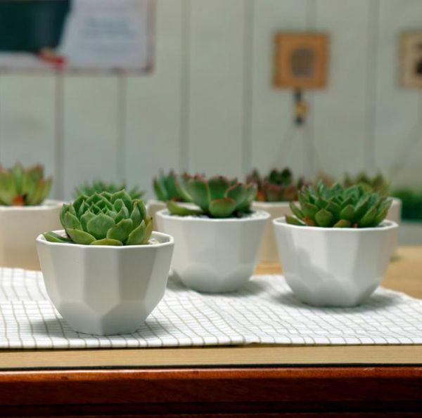 100pcs Simple white fleshy small ceramic polygon stitching wide mouth matte flower pot SN1566