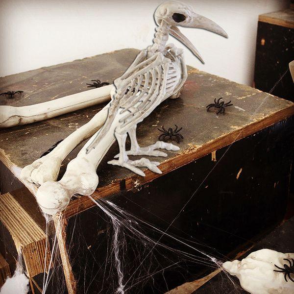 NUOVO disegno Pazzo Bone Skeleton Raven 100% di plastica animali ossa ossatura Orrore Natale Prop Corvo Scheletro Decoration