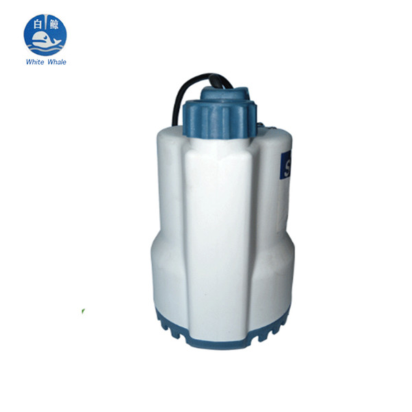 65L/min 250W 220V/50HZ Horticultural Field Irrigation Submersible Pumps