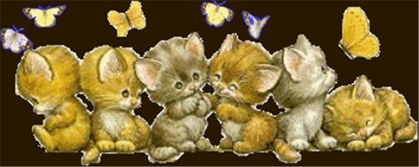 Rhinestone plein carrés diamants broderie animal beau chat diy diamant peinture kit de point de croix kit accueil mosaïque décoration zxh1372