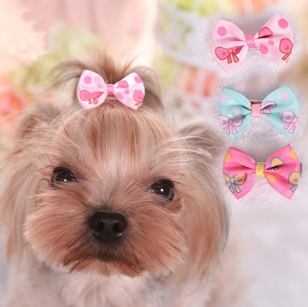 10 pcs Bonito Pet Dog Cat Dog Grooming Suprimentos de Beleza Arcos Hairpin Pet Grampos de Cabelo Pet Shop Dog Hairband Acessorios