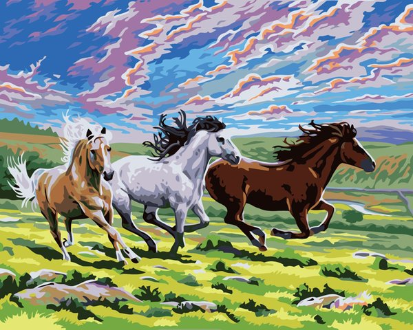 16x20'' DIY Paint On Canvas drawing By Numbers Kits Running Horses on Grassland Art Acrylic Oil Painting Frame For Adults
