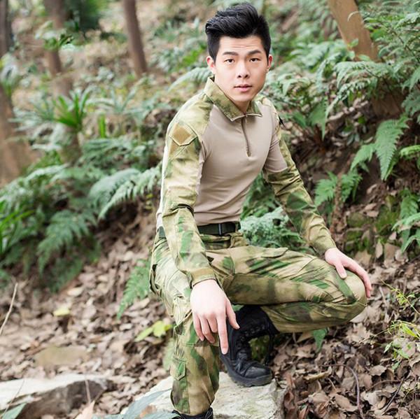 Gobi jungle