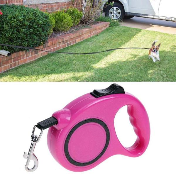 Retractable Hundeleinen Automatische Verlängerung Nylon Walking Hundeleine für kleine mittlere Hunde Zubehör 3M 5M Pet Products
