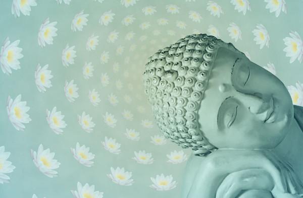 Teal Buda Flores De Lótus Home Decor Art Poster De Seda 24x36 polegada 24x43 polegada