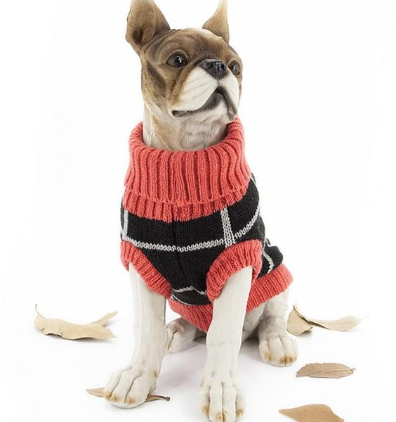 Pets, sweaters, dogs, Teddy, bears, sweaters, dogs and dogs.