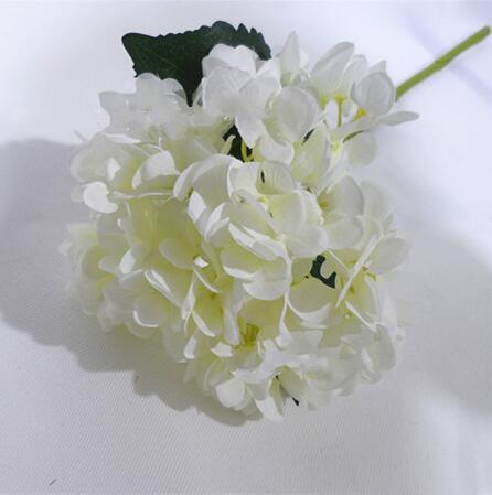 # 1 흰색