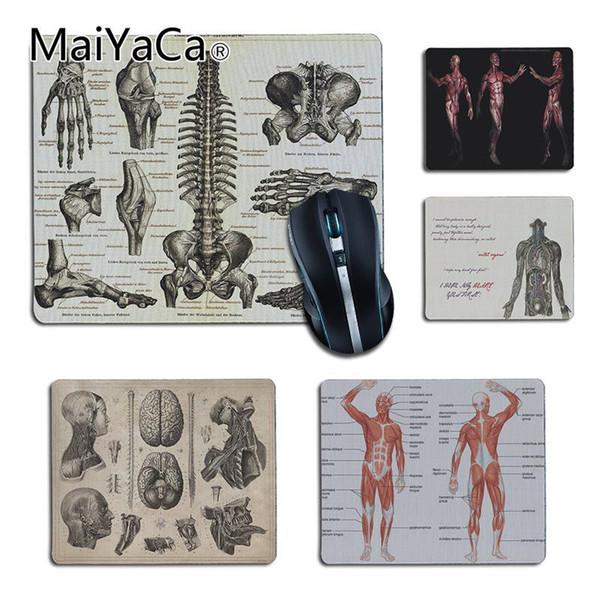 Compre Anatomía De La Medicina Maiyaca Ratones De Oficina ...