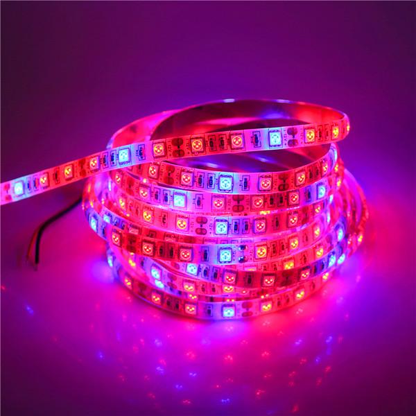 0.5 -5 M Su Geçirmez 5050 LED Esnek Şerit Bant Işık Büyümek 3/4/5 Kırmızı 1 Mavi Akvaryum Sera Topraksız Bitki Lamba Büyümek