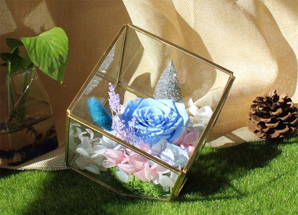 New Garden Miniature Glass Terrarium Geometric Diamond Desktop Garden Planter For Indoor Gardening Home Decor Vases XWX9-672