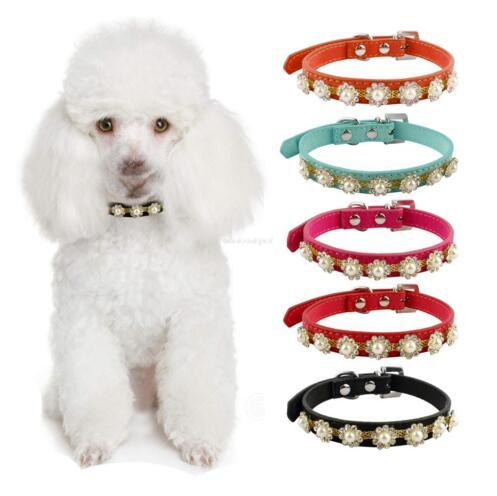 Rhinestone Dog Cat Collars Suede Leather Pearls Flower Studded Diamante Buckle For Poodle Chihuahua 1pc wholesale