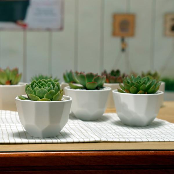 wholesale 100pcs Simple white fleshy small ceramic polygon stitching wide mouth matte flower pot free shipping