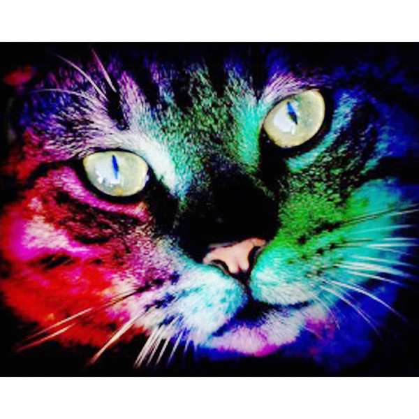 diamond paintings color cat 5d Embroidery full square drill diamond painting cross stitch diy mosaic Home Decoration free shipping
