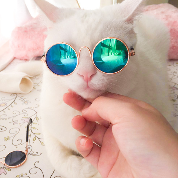 best selling 10 Pieces Hot Sale Pet Sunglasses for Cat Small Dogs Eyes Protection Sun Glasses Puppy Photos Props Eyewear