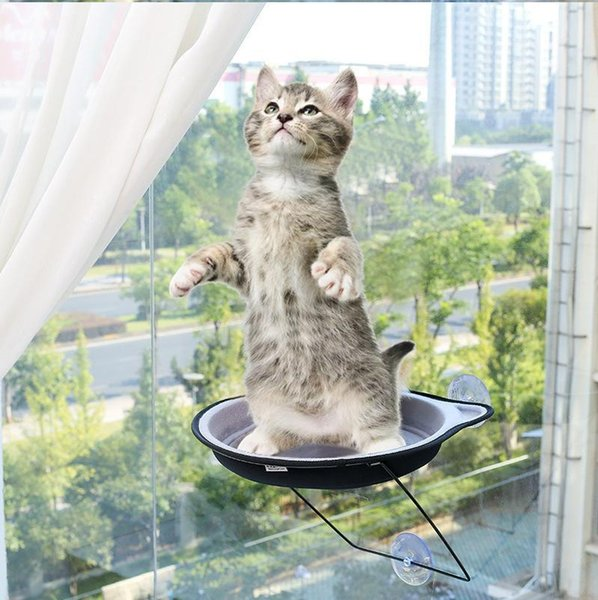 Awesome 2019 Cat Bed Window Seat Suction Cups Space Saving Cat Hammock Pet Resting Seat Safety Cat Shelves Weighted Up To 30Lb From Aiyahoo 23 8 Dailytribune Chair Design For Home Dailytribuneorg