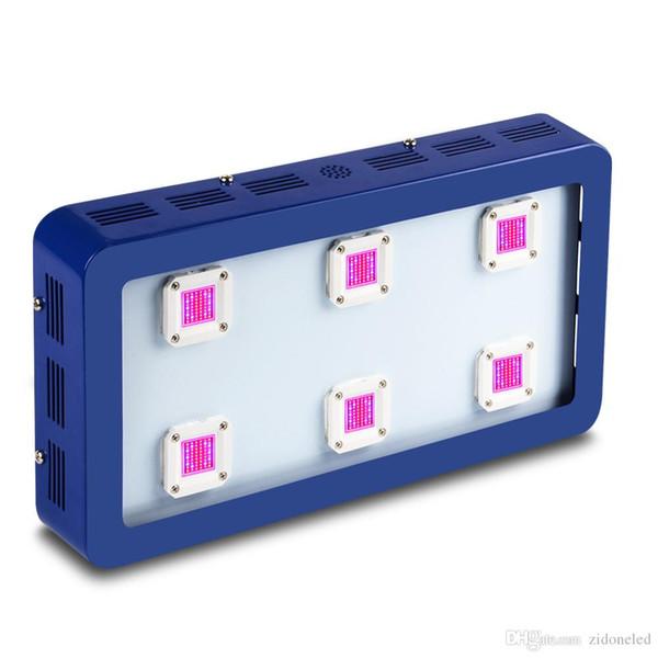 spectre complet conduit élèvent des lumières Bestva X4 / X5 / X6 1200W / 1500W / 1800W élèvent des tentes Hydro / Aeroponic éclairage de croissance des plantes (cas bleu)
