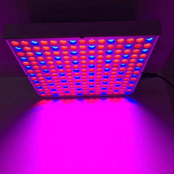 225 Lampada di crescita per piante a LED 45W serra fiori da vivaio coperta luce di ingresso multi-tensione di alimentazione AC 85V-265 Lampade in crescita