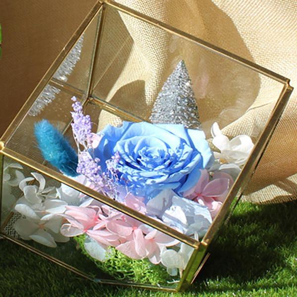 New Garden Miniature Glass Terrarium Geometric Diamond Desktop Garden Planter For Indoor Gardening Home Decor Vases HH7-1181