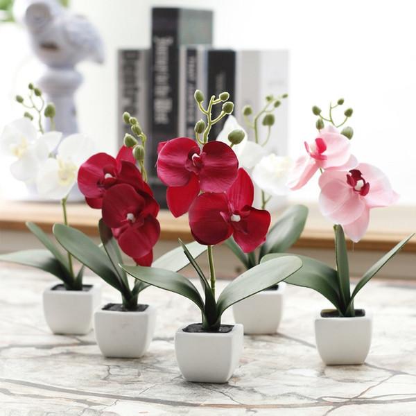 Phalaenopsis mini planta en maceta altura 23cm decoraciones de plantas artificiales pompones decoraciones de navidad guirnalda marcos holloween flores