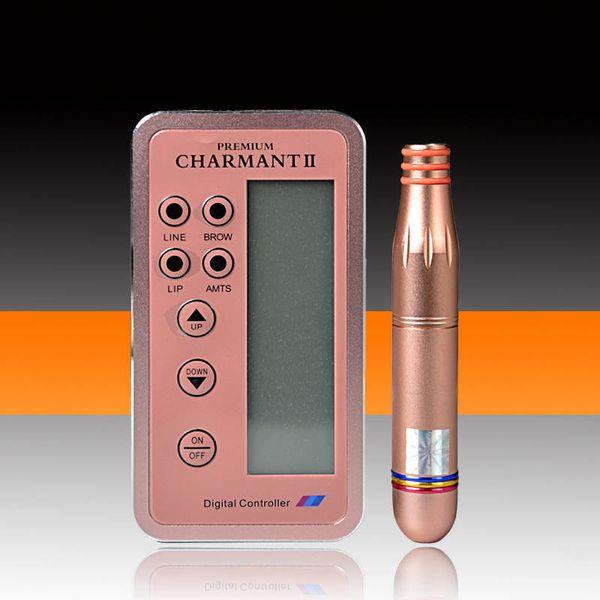 Charmant 2 Professionelle Permanent Makeup Tattoo Machine Kit für Augenbrauen Tattoo Lip Eyeliner Microblading MTS Stift mit Patronen