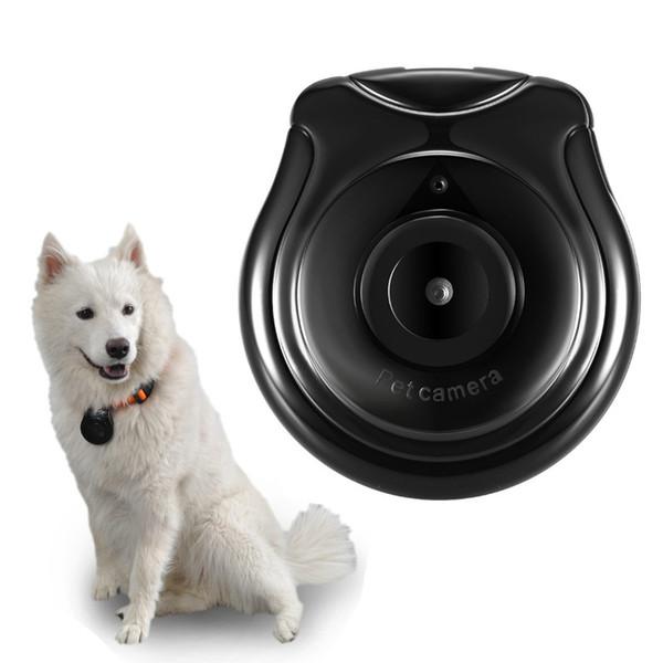 Kablosuz IP Kamera Pet Kam için Pet Monitör Anti Kayıp Pet Monitör Hareket Algılama Video Kayıt Köpek TV 1 ADET