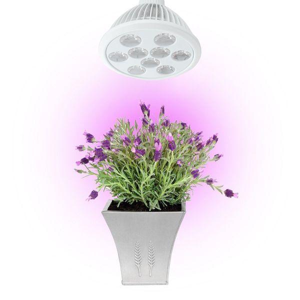 LED Grow Light 7W 9W 12W E26 E27 Plant Grow Light Full Spectrum Led Lamp for Indoor Plants Hydroponic Garden Greenhouse