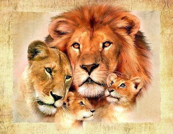 İğne çapraz dikiş hediye Tam elmas nakış aslan familyr resim diy elmas Boyama Avrupa ev dekor elmas mozaik