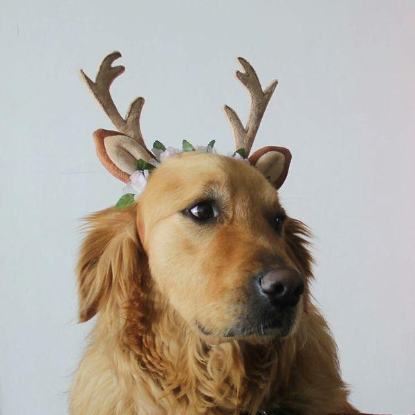 Christmas Elk Pet Headband Cute Dog Hat Cat Jewelry Fairy Antler Headband Hair Accessories Elk Jewelry Christmas Pet Supplies