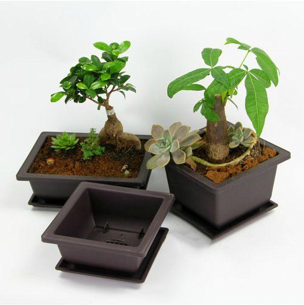 6 Sizes Retro Basin Plastic Flower Pot Balcony Flower Bonsai Planter Nursery Pots Maceta Cuadrada for Garden