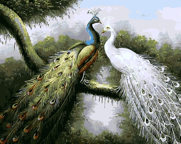 16x20 inches Forest Green & White Peacock DIY Paint On Canvas drawing By Numbers Kits Art Acrylic Oil Painting Frame For Adult Teen
