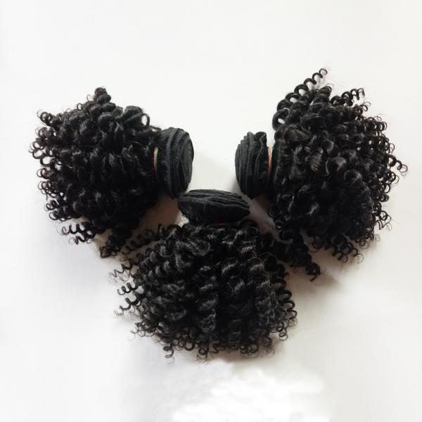 Brazilian Virgin Human Hair weaves sexy short 8-12inch hair double weft Indian European Kinky Curly remy hair no tangle and no shedding