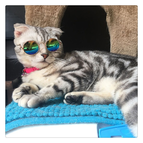 Fashion Cool Cat Glasses Pet Dog Eye Protection Sunglasses Kitty Puppy Photo Props Toy Hot Sale