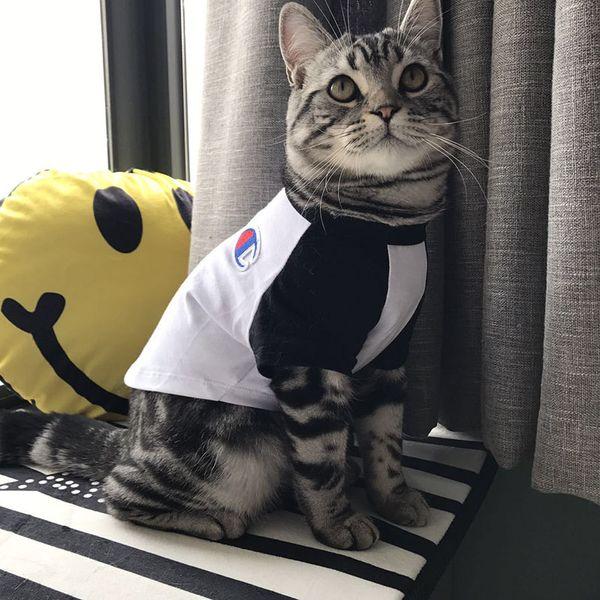 Pet Dog Cat T-Shirts Tide Brand Cute Teddy Puppy Schnauzer Apparel Summer T-Shirts Outwears Small Dog Cat Clothing
